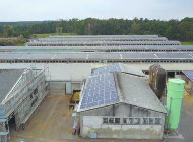 748,41 kWp – Jeetze II – Photovoltaikanlage - Photovoltaik-PVA-Jeetze-SunShine-Energy-14-scaled.jpg