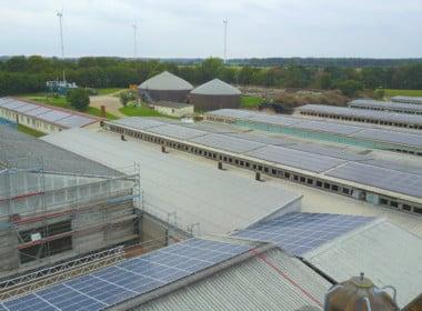 748,41 kWp – Jeetze II – Photovoltaikanlage - Photovoltaik-PVA-Jeetze-SunShine-Energy-4-scaled.jpg
